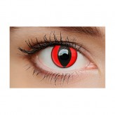 Cat Eye Red 1-Day